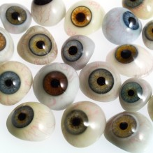 L0036581 A selection of glass eyes from an opticians glas eye case.